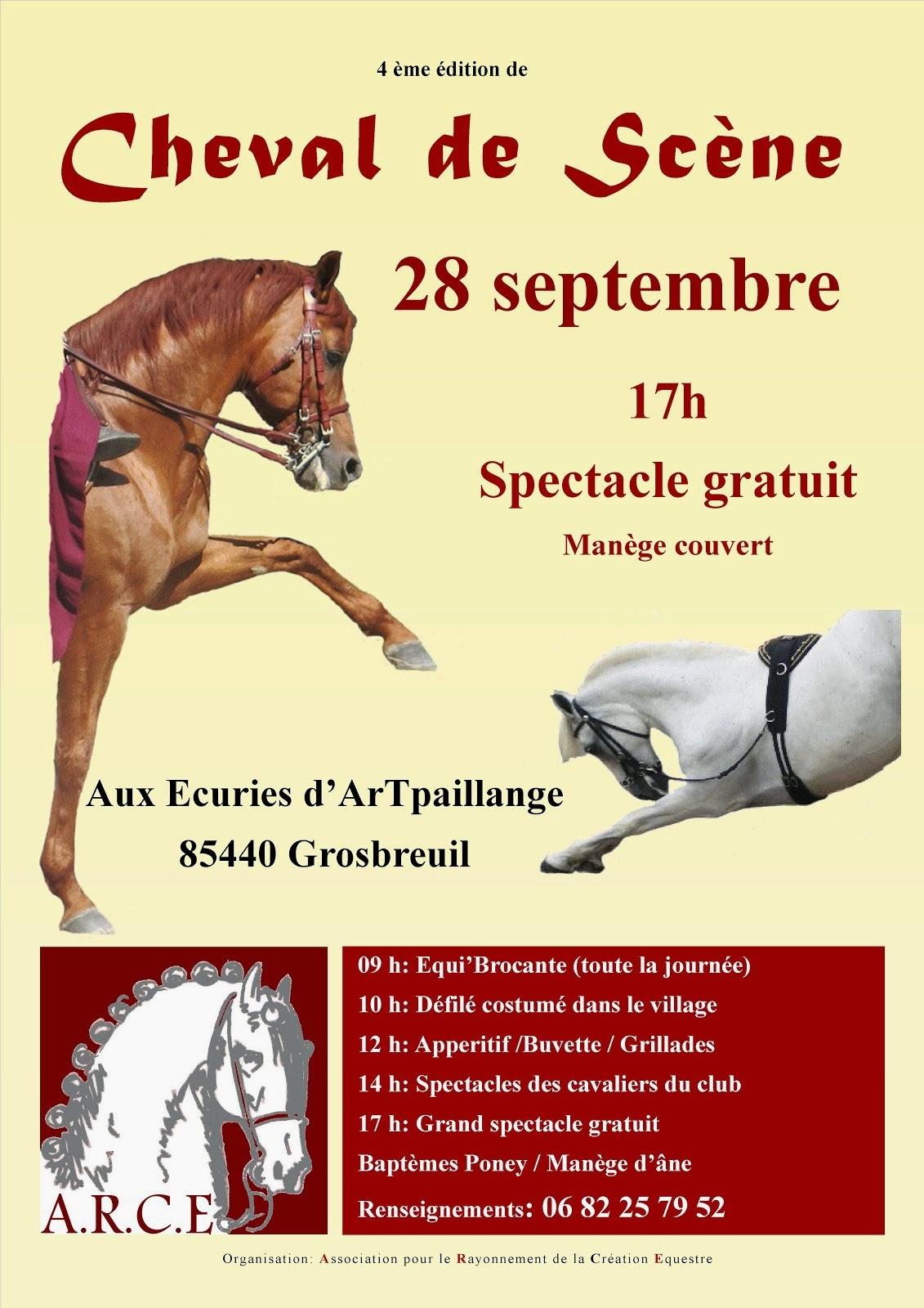 Cheval de scène Grosbreuil Ecuries d'Artpaillange