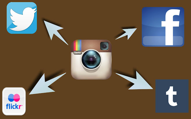 Aptness  Of Instagram In Social Networking And Promotions