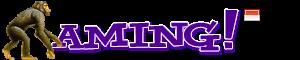 AMING.id™