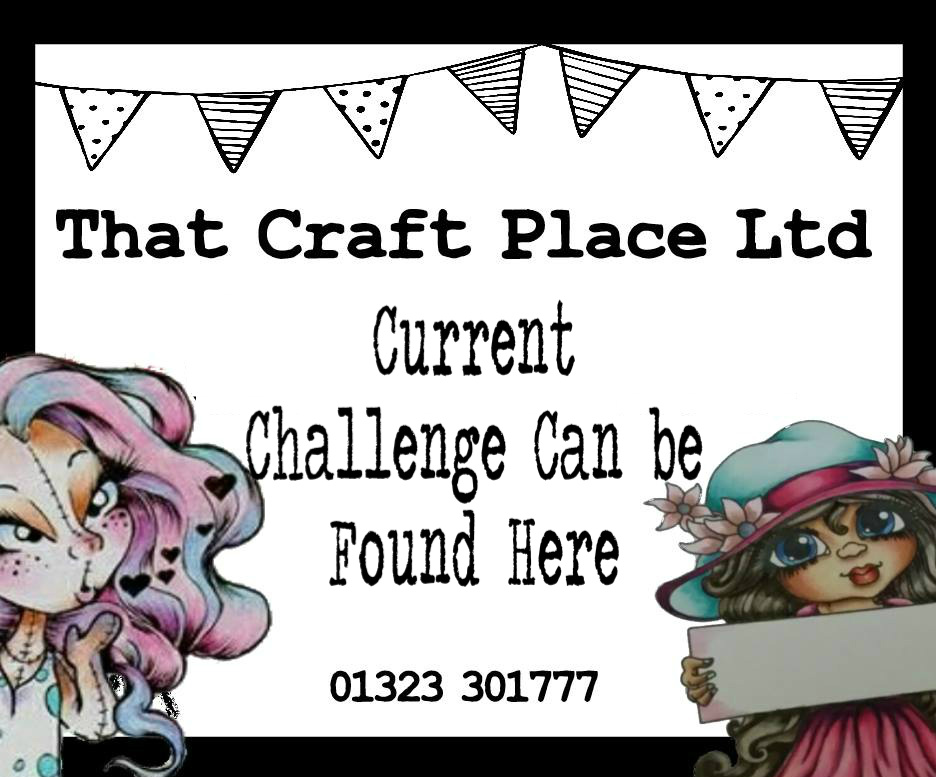 That Craft Place Ltd