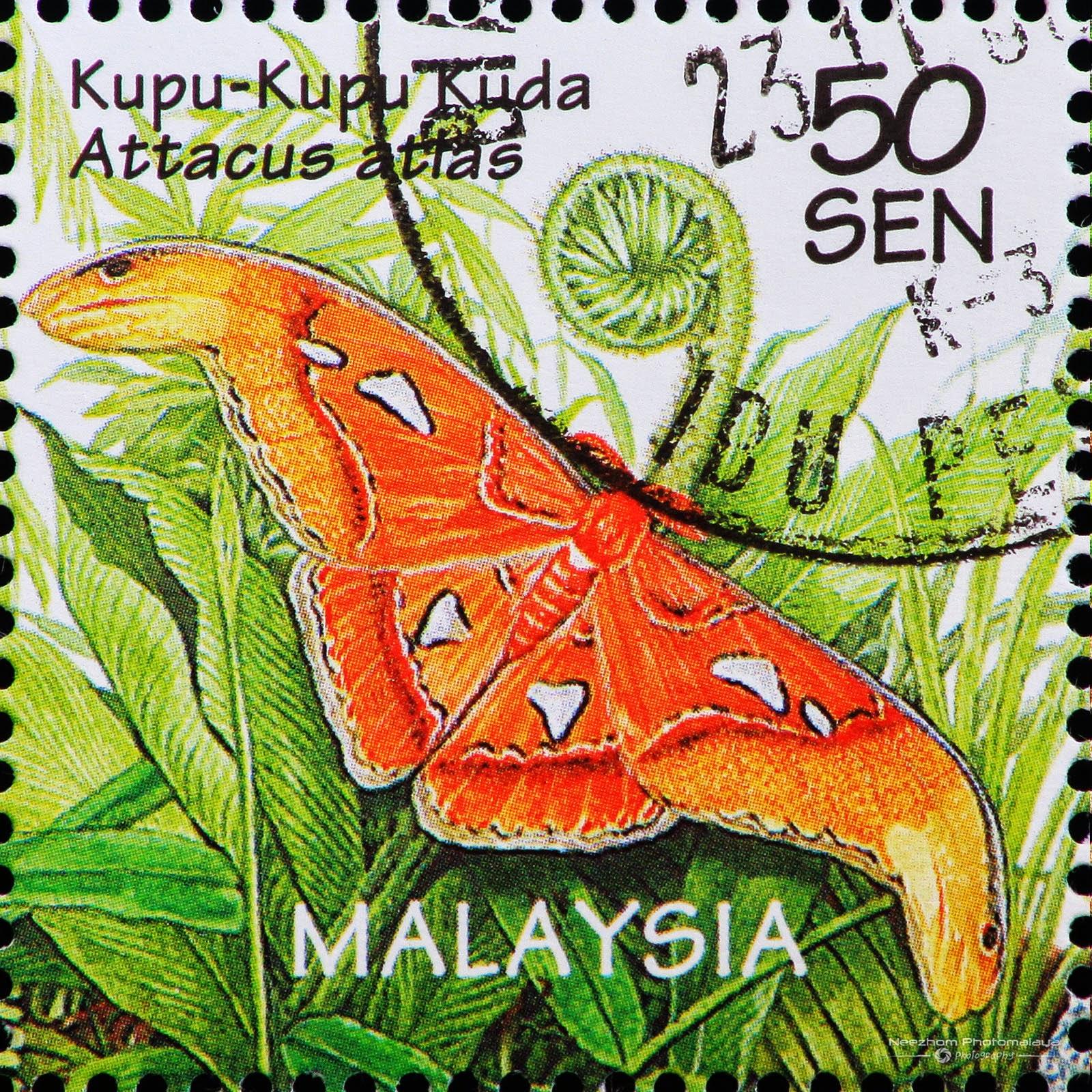 Malaysia 1996 Wildlife - Atlas Moth / Kupu-kupu Kuda (Attacus atlas) 50 sen