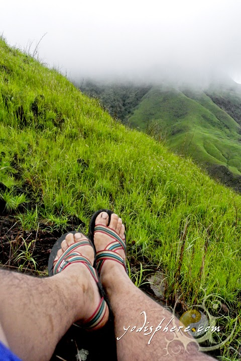 Foot shot at the Mt. Cinco Picos trail hover_share