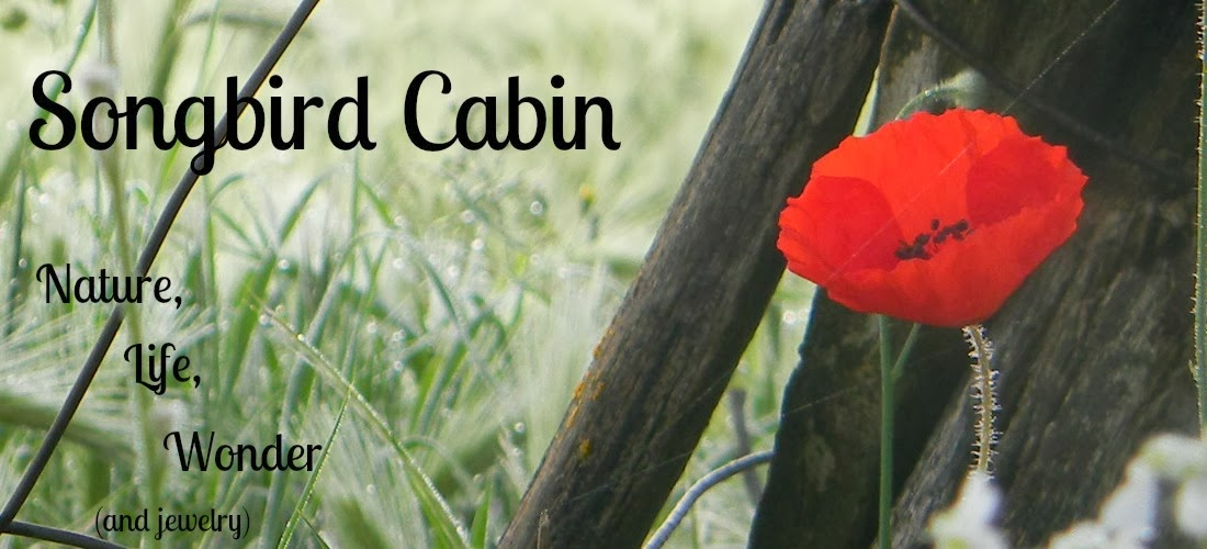 Songbird Cabin