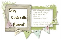 Shop Cinderella Moments
