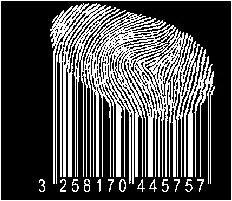 Eine Gleichung: Neoliberaler Turbokapitalismus = Algorithmen = NSA|GCHQ