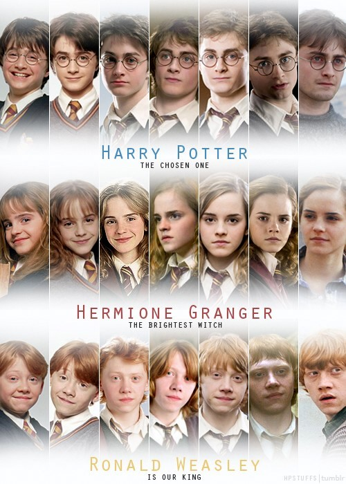 Hogwarts Alumni Harry Potter Cast Evolution