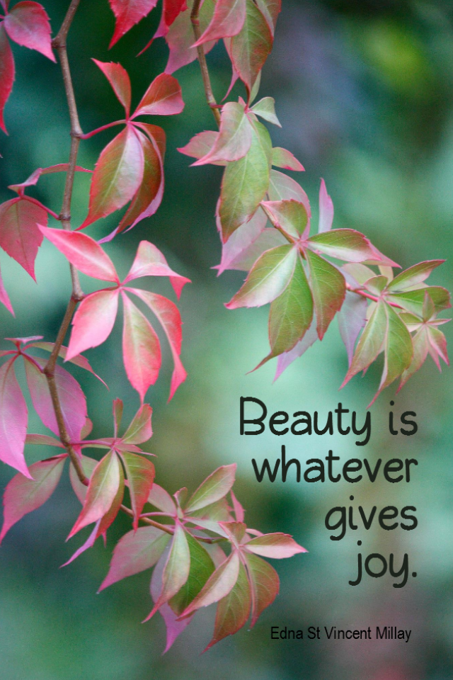 visual quote - image quotation for BEAUTY - Beauty is whatever gives joy. - Edna St Vincent Millay