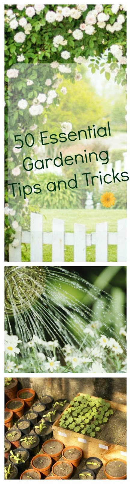 Garden Therapy Things To Fix Up Your Yard