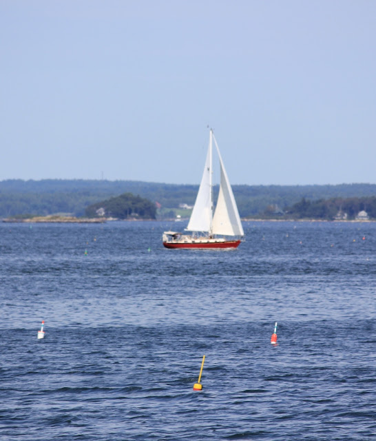 sailboat in Casco Bay