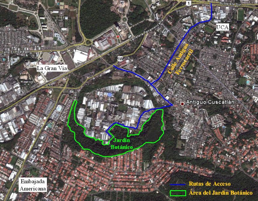 Guanacos verdes jardin bot nico un oasis en la ciudad for Caracteristicas de un jardin botanico