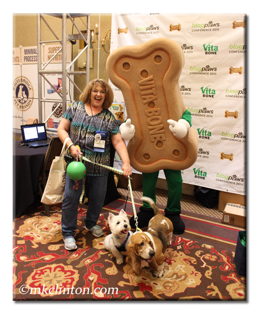 Person in dog biscuit costume, woman and two dogs