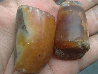 batu fosil mani gajah