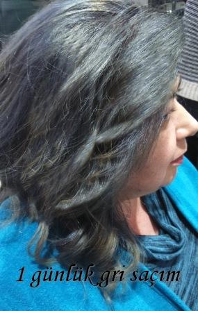 Bahia Dekorasyon Gri Saç Boyası Affinage