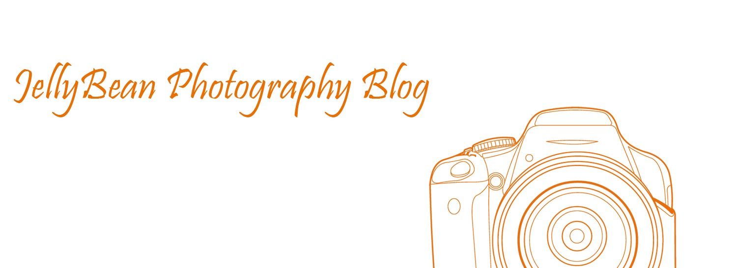 Our Blog - JellyBean Photography