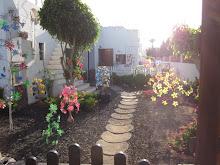 Canarian Garden