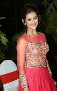 Pooja Jhaveri in beautiful Orange Transparent Anarkali at Bham Bolenath Audio Release