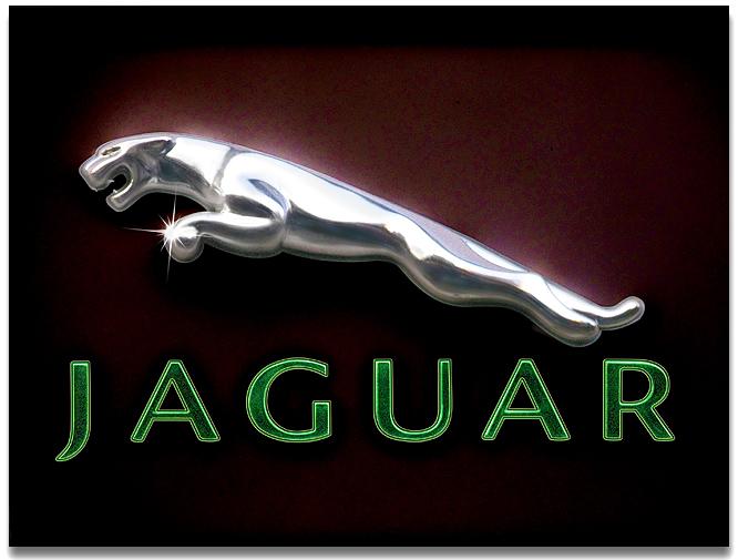 everything about all logos jaguar logo pictures. Black Bedroom Furniture Sets. Home Design Ideas