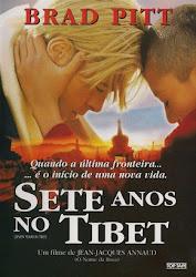 Baixar Filme Sete Anos no Tibet (Dublado)