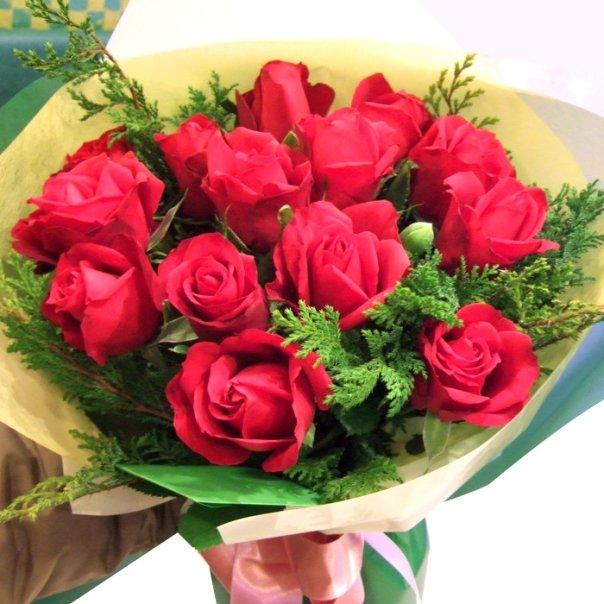 Hình ảnh hoa 20-11 đẹp nhất