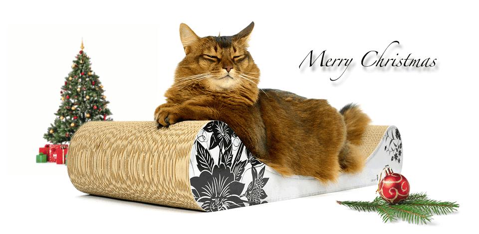 Weihnachtsgeschenke Für Katzen Design Kratzbäume Und Möbel Für Katzen