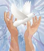 . pero no podemos negar que muchas aspiraciones de paz y de convivencia se . paz flores