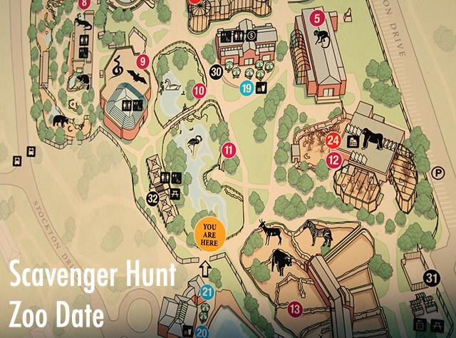 krystle darling Lincoln Park Zoo Scavenger Hunt
