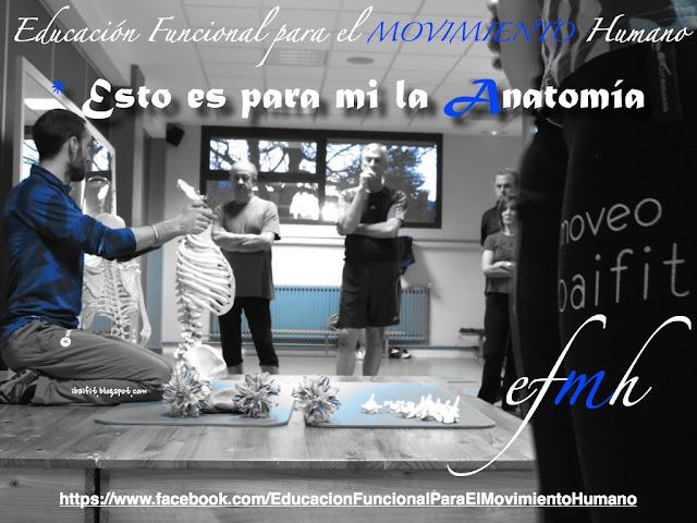 Educación Funcional para el Movimiento Humano: julio 2013