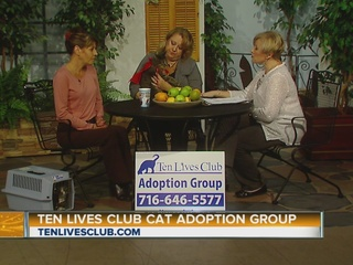 http://www.wkbw.com/am-buffalo/ten-lives-club