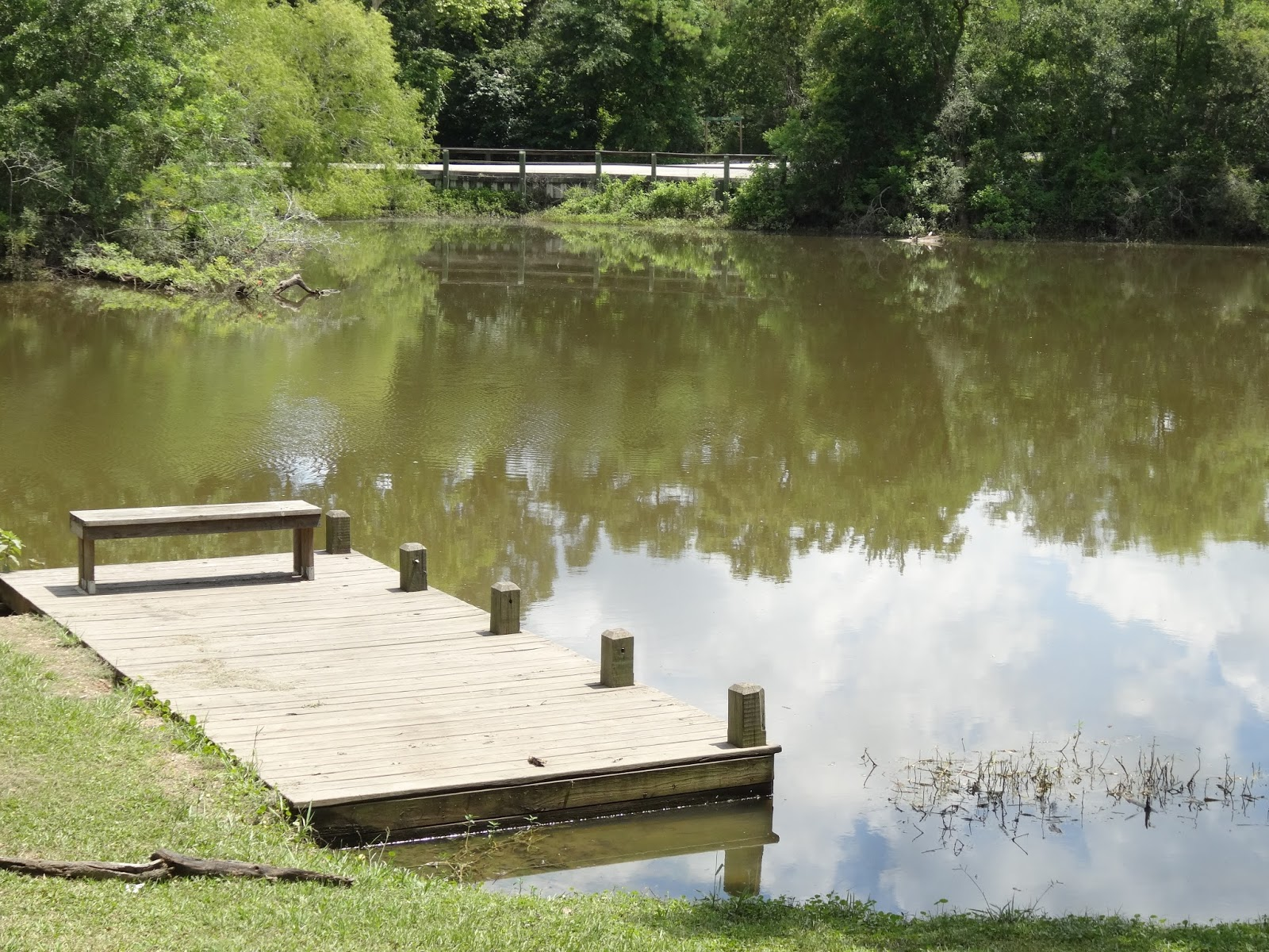 Where To Fish In Houston??: # 138 Camp Mohawk