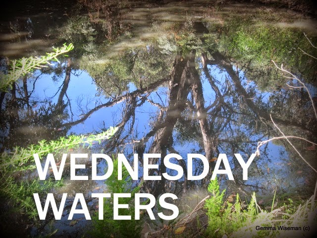 Wednesday Waters