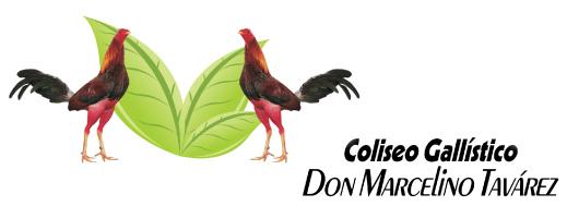 Coliseo Gallistico DMT * Don Marcelino Tavarez