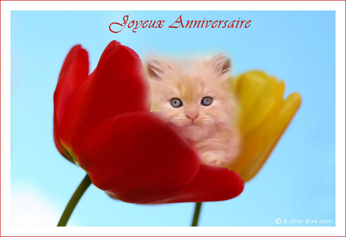Anniv on pinterest google teddy bear birthday and invitations - Carte joyeux anniversaire a imprimer gratuite ...