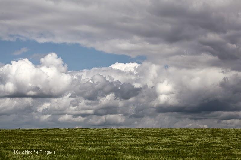cloudy sky over a cornfield in Bavaria
