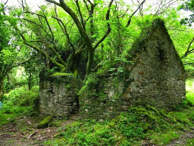 Casa abandonada en Irlanda