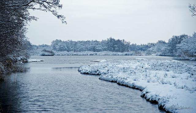 Sneeuw in 't Hol in Kortenhoef