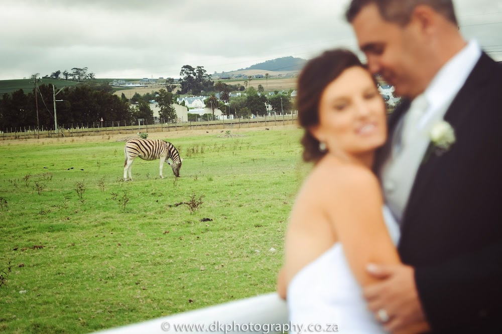 DK Photography DSC_9451-2 Sean & Penny's Wedding in Vredenheim, Stellenbosch  Cape Town Wedding photographer
