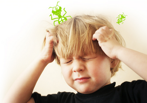 Surprisingly Easy, Fast and Natural Ways to Beat Head Lice!