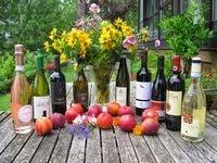 Weinpaket: Belvini (6 Flaschen aus Italien) plus drei Einzelflaschen