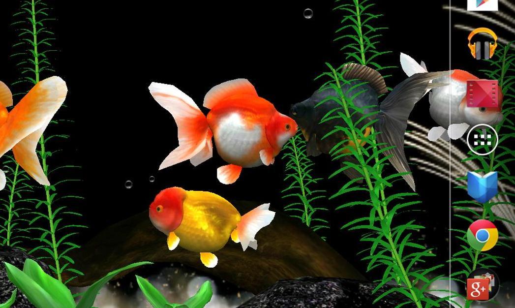 Aquarium Live Wallpaper V335 Apk
