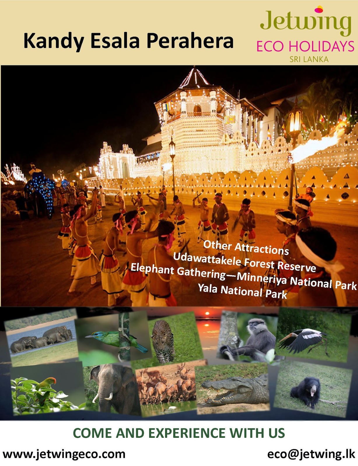 http://www.jetwingeco.com/highlights-of-month/kandy-esala-perahera-packages