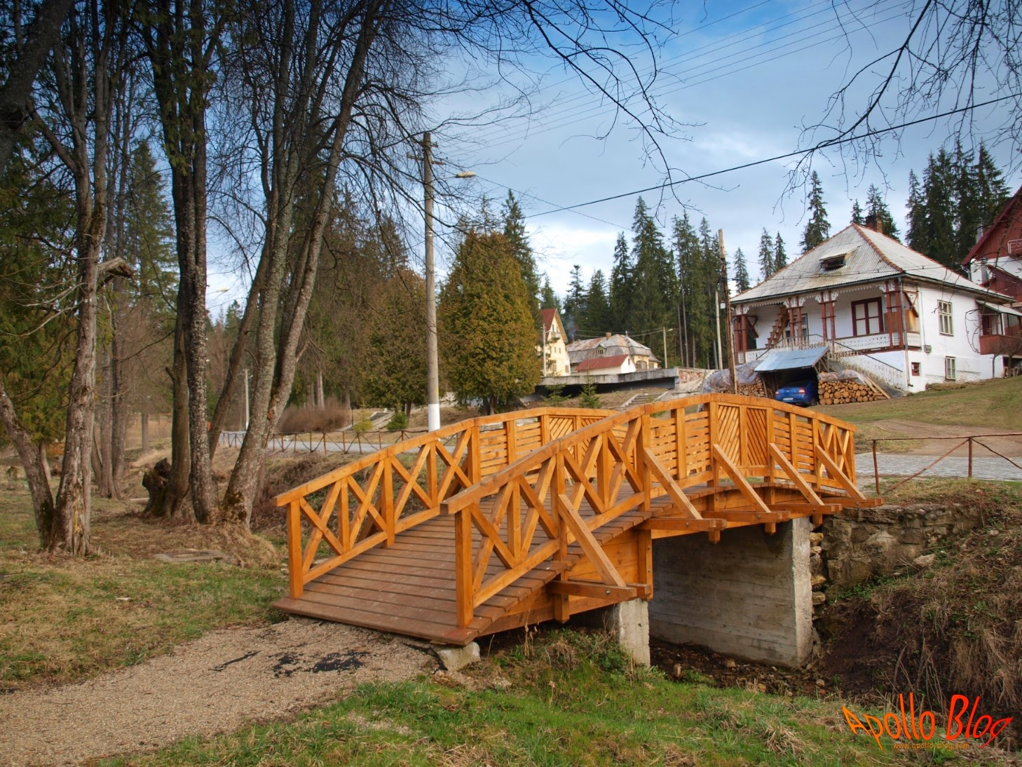 Pod de lemn arcuit
