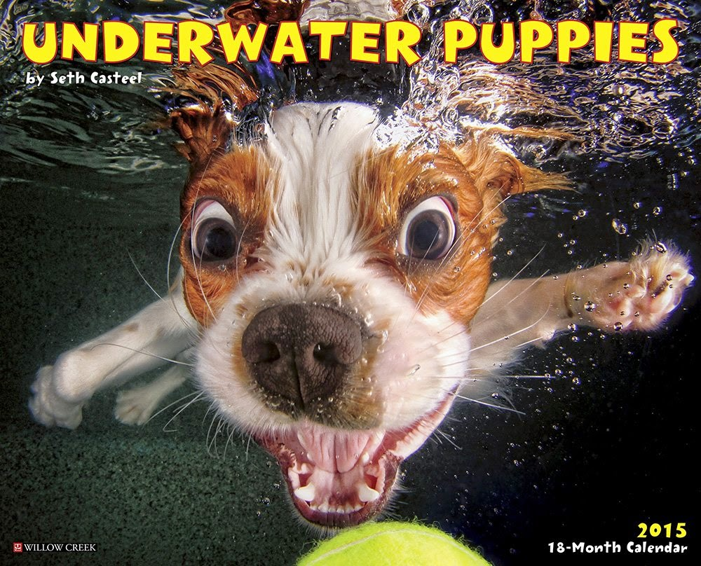 underwater-dogs-calendar