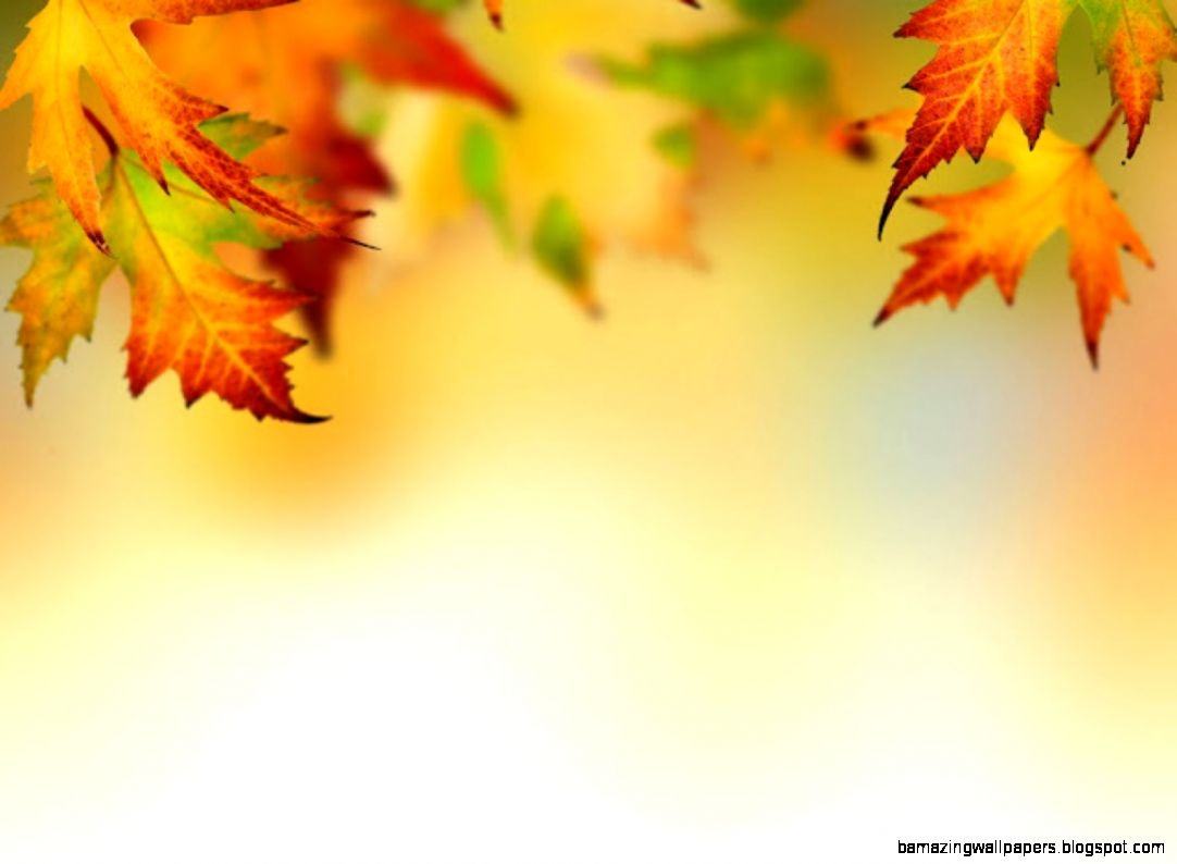 Fall Leaf Border   wallpaper