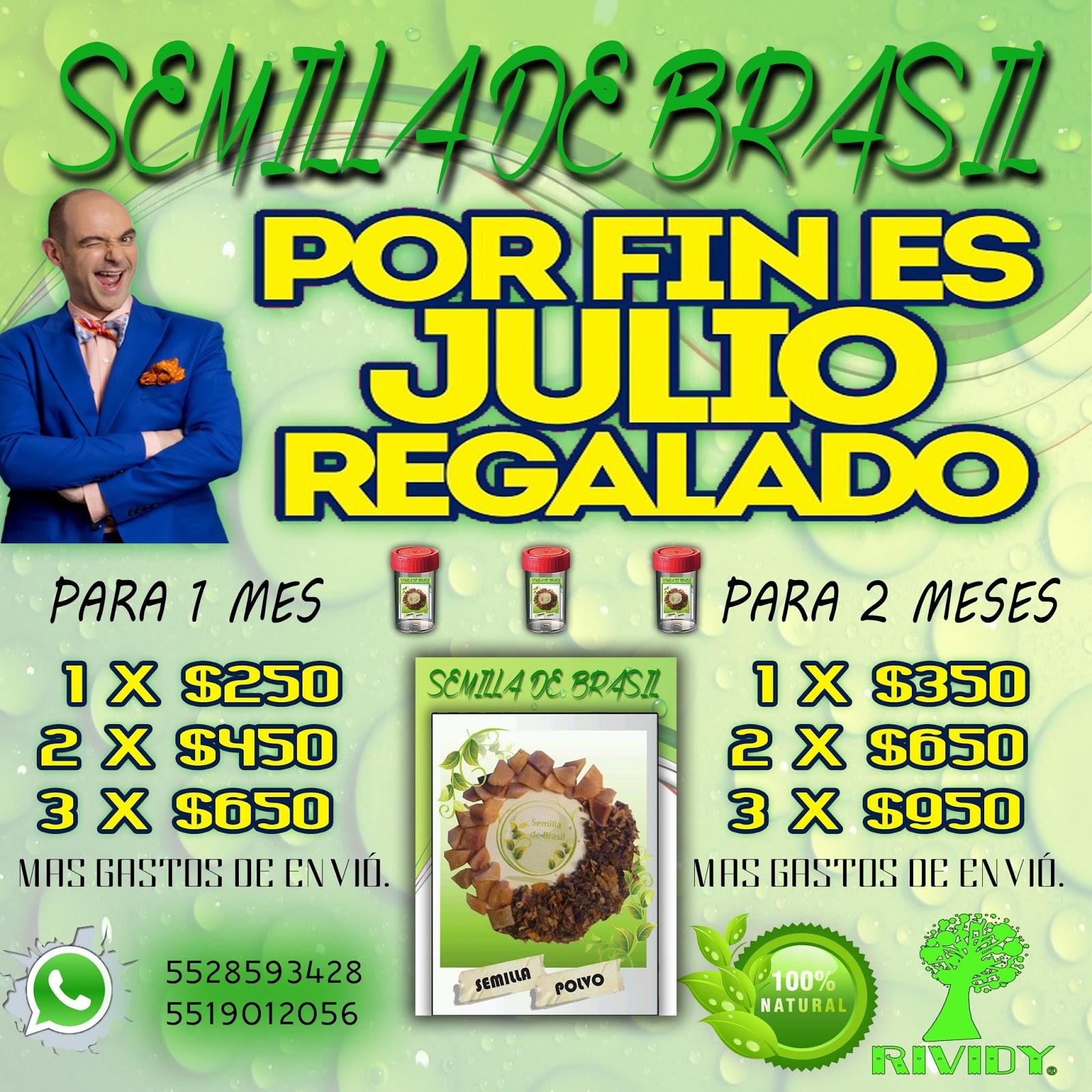 Semilla de brasil rividy julio 2015 Semilla de brasil es toxica