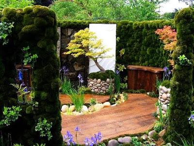 foto jardín vertical de musgo
