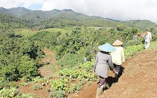 Petani Terancam Kehilangan Lahan Garapan