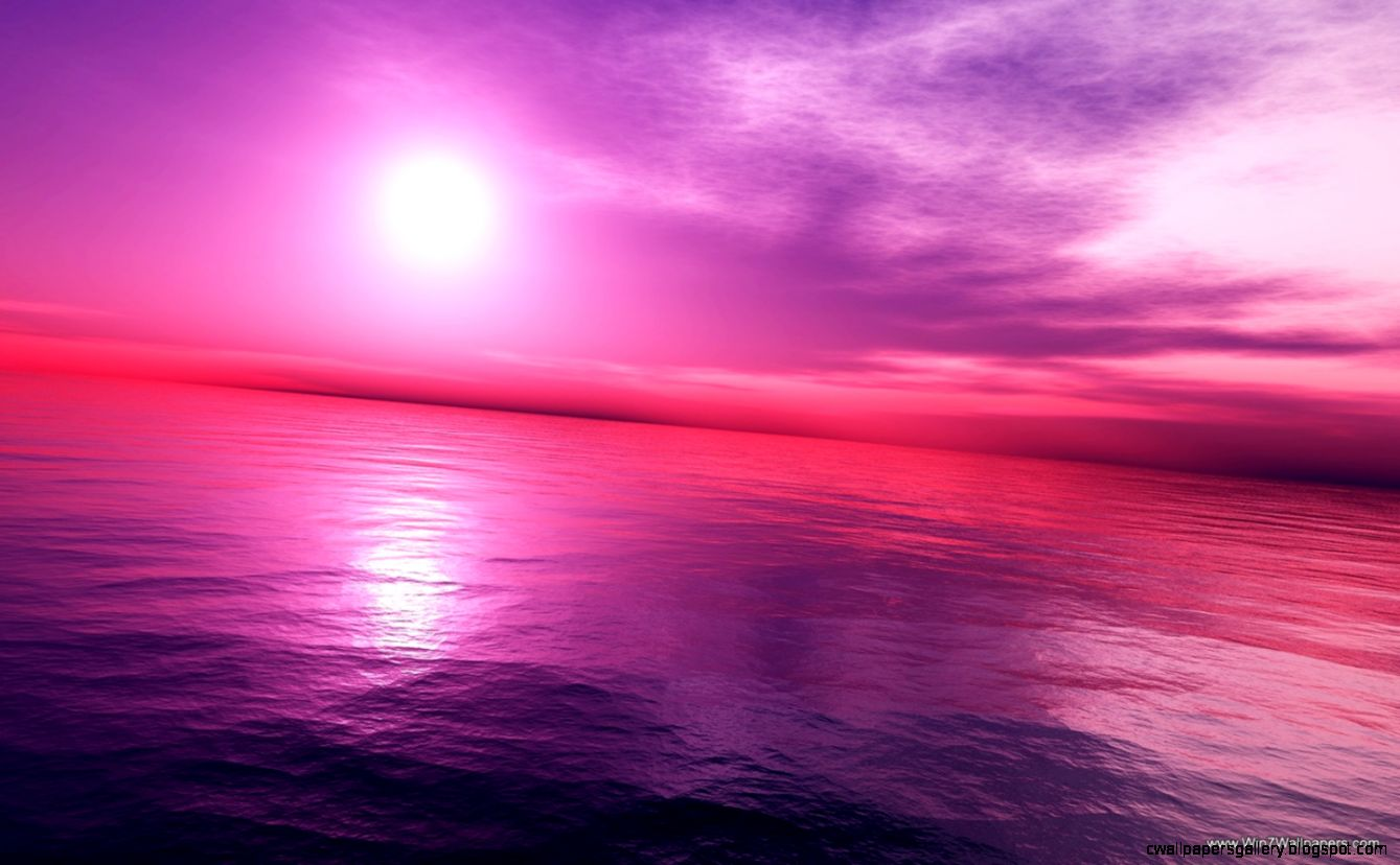 Pink Sunset Wallpaper HD   WallpaperSafari