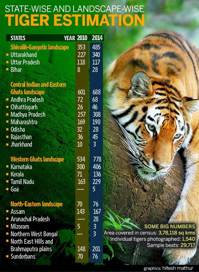 essay on save the tiger Will save tigers is that there should be ban on hunting of tigers for   malaysia   300   493   fair   myanmar   100   150   fair   nepal   100   194   good 336 words 2.