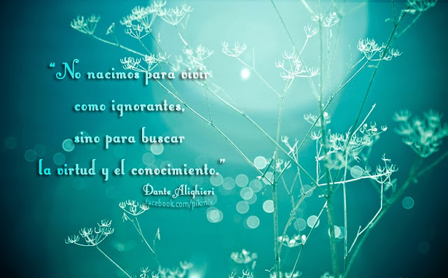 No nacimos para ● Frase ● Dante Alighieri