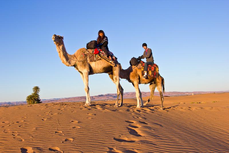Riding camels in the dunes of the Sahara Desert near Zagora